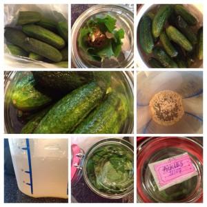 Pickles, fermenterede drueagurker