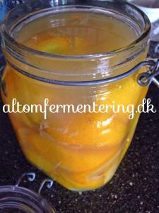 marokkanske citroner