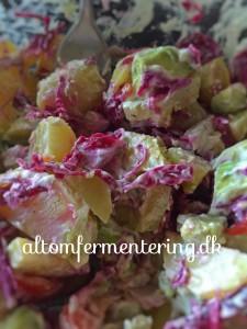 kefir fraiche saurkraut kartoffelsalat