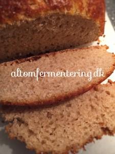 V andkefir spelt brød