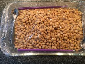 Natto Opskrift fermenterede sojabønner