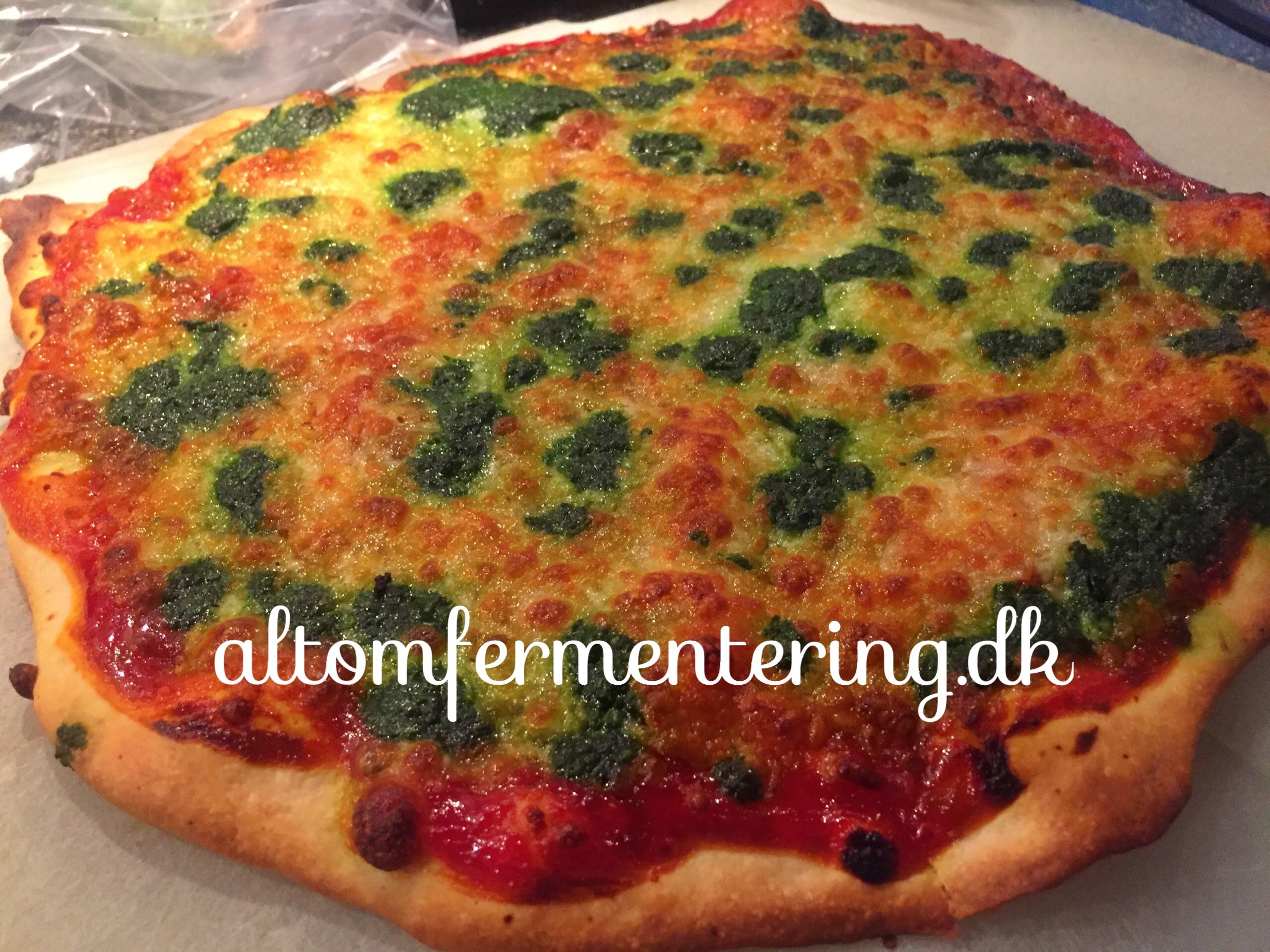 Surdej Pizza eller Tærte Bund