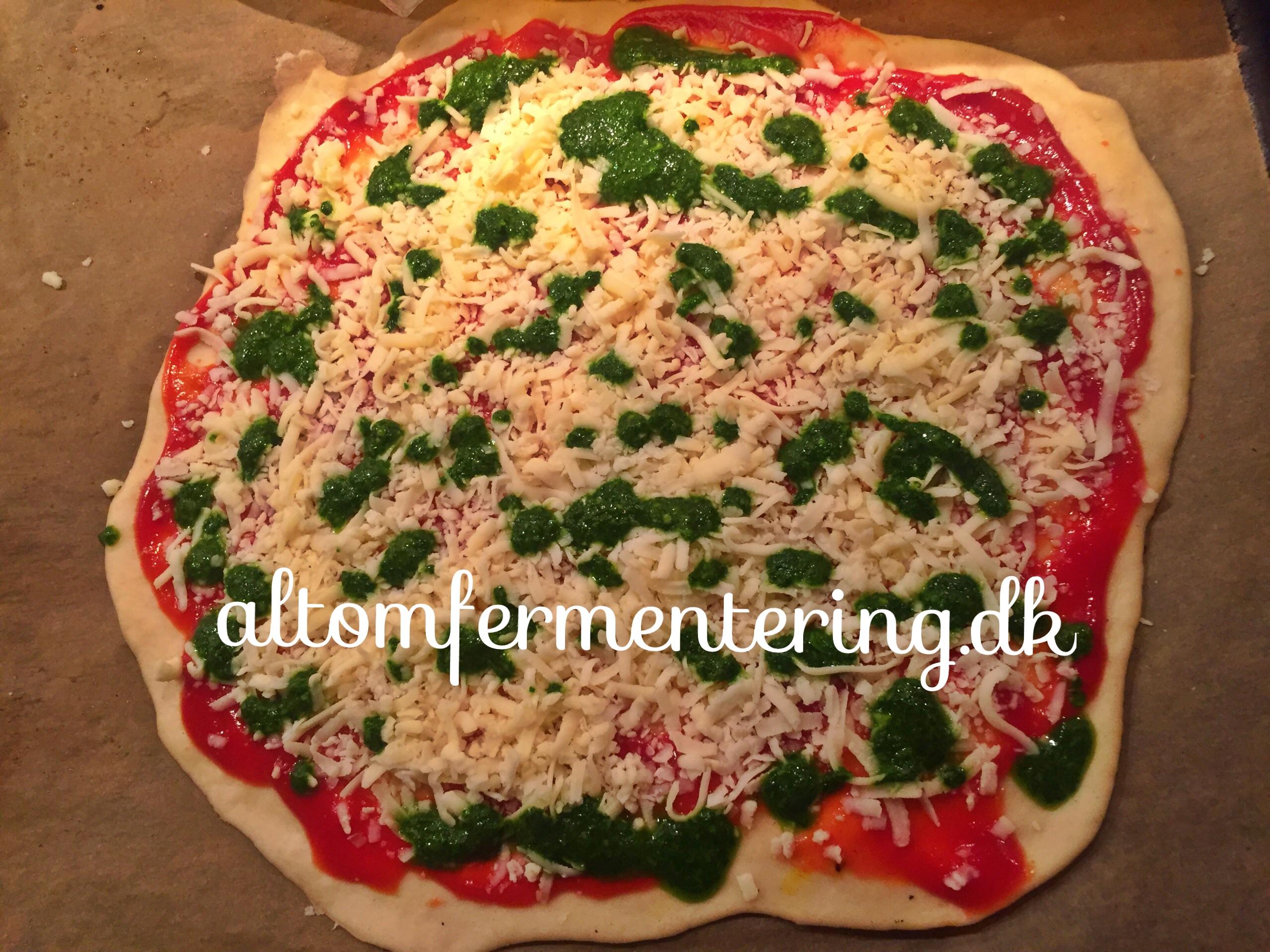 Surdej Pizza Eller Tærte Bund Alt Om Fermentering Fermentering