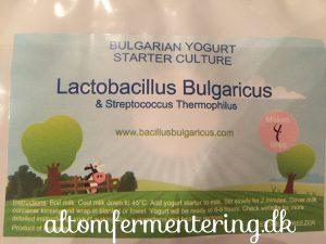 Bulgarsk yoghurt opskrift