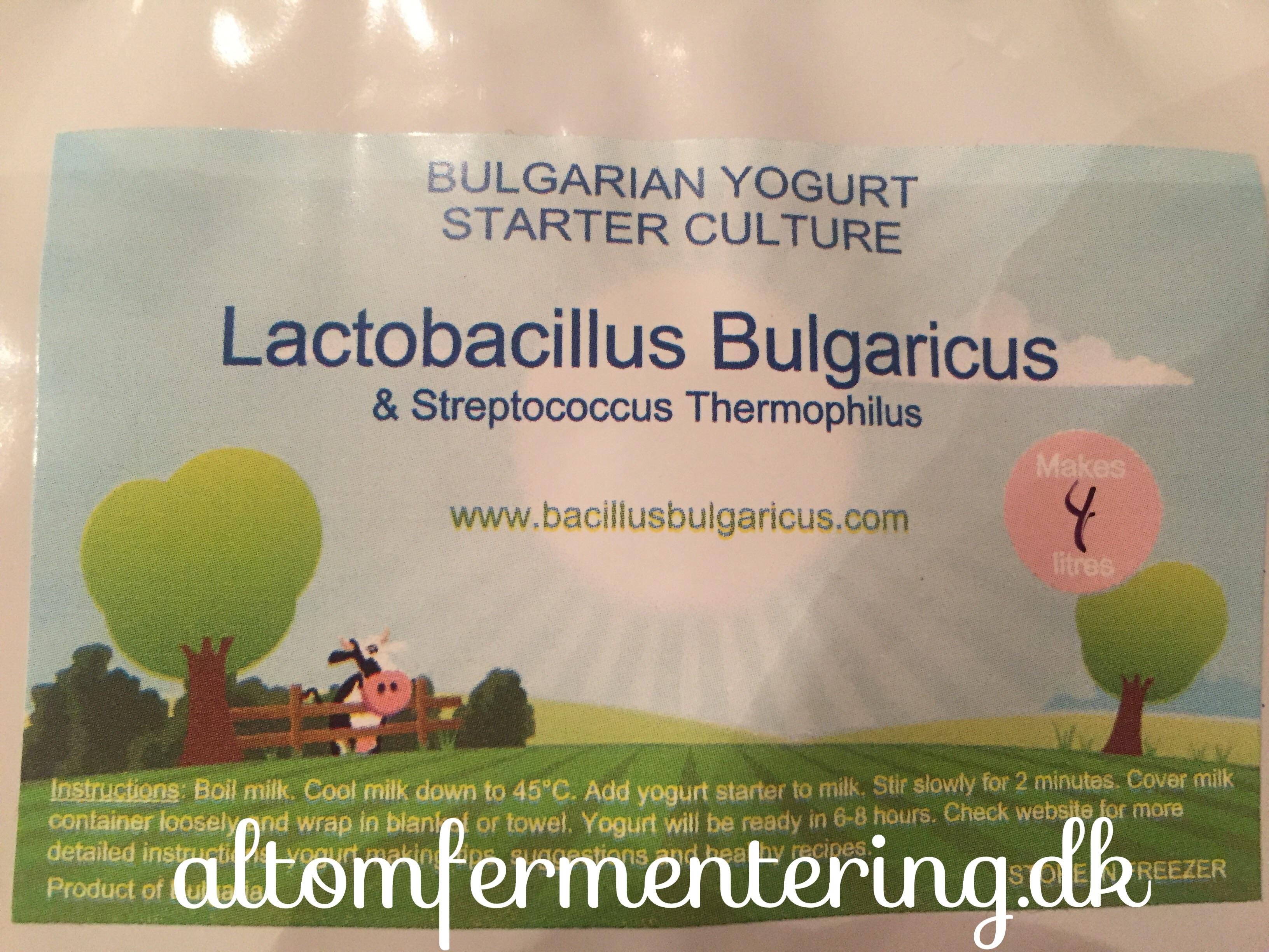 Soja Mælk Yoghurt Opskrift