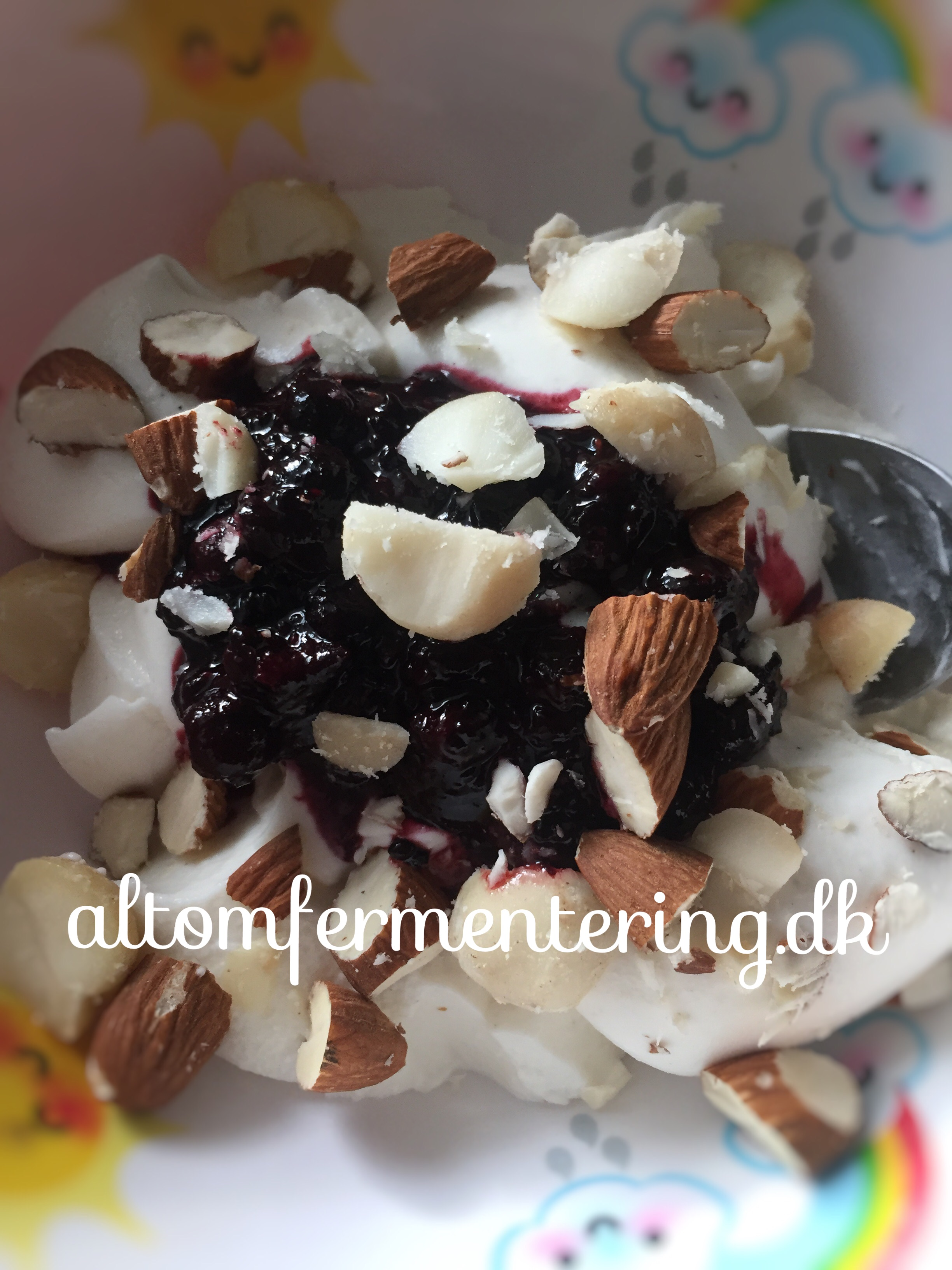 Kokosmælk Yoghurt Opskrift