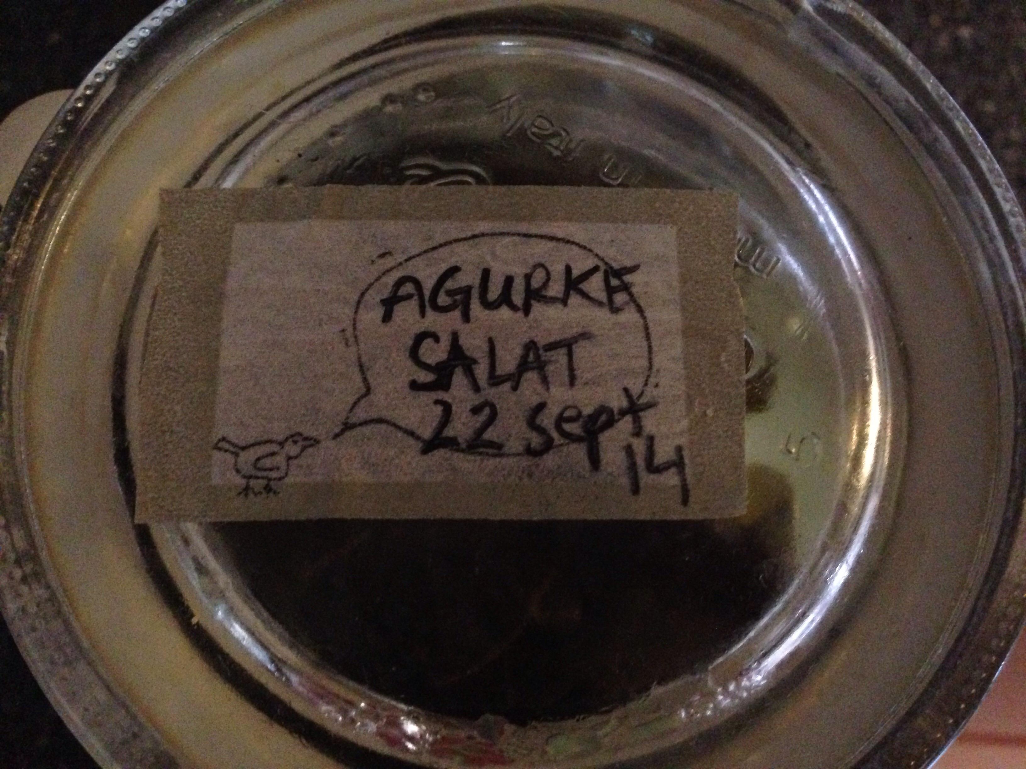 Agurke Salat fra sommerens sidste drueagurker