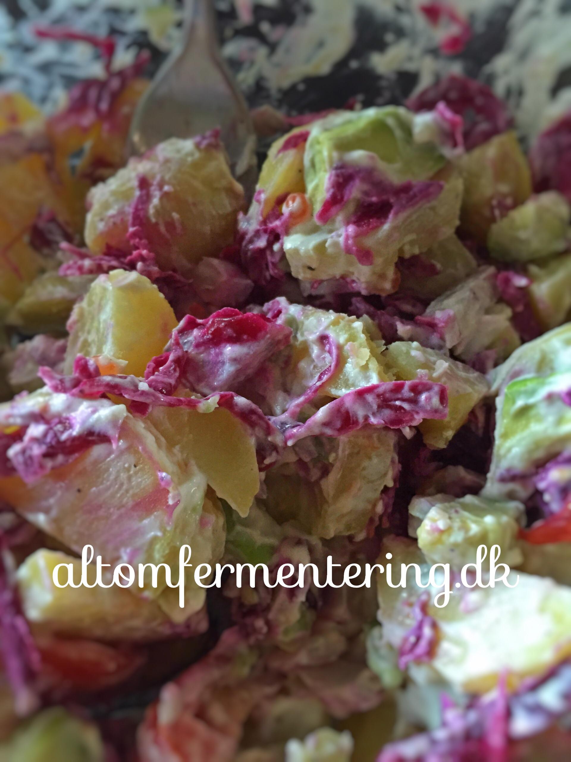 Kefir Fraiche og Kraut Kartoffel Salat
